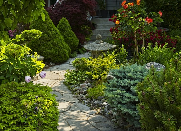 Evergreens low maintenance landscaping 17 great ideas for Easy maintenance landscaping