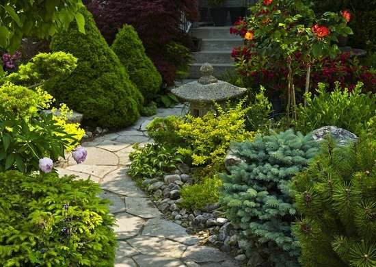 Evergreens low maintenance landscaping 17 great ideas for Easy to maintain landscaping