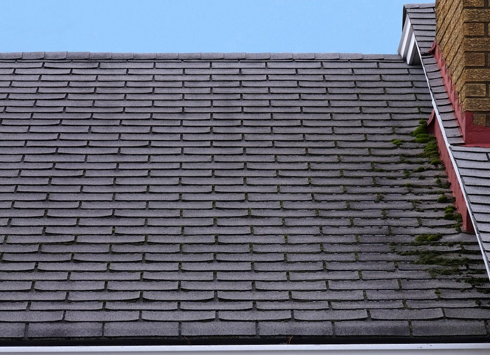 Replace_roof_-_moss_and_mold