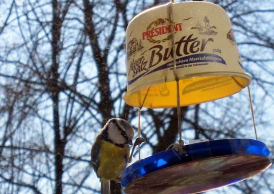 Backyarddiy birdfeeder
