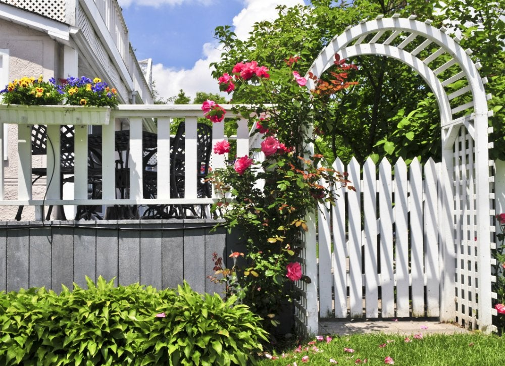 Painted trellis and fence