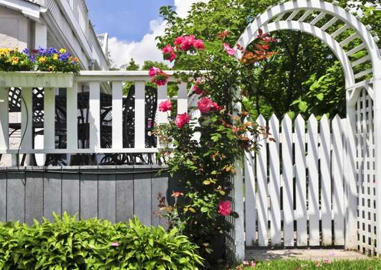 Painted_trellis_and_fence