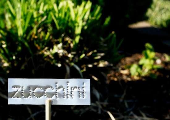Plant_marker