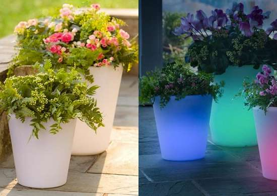 Planter lights