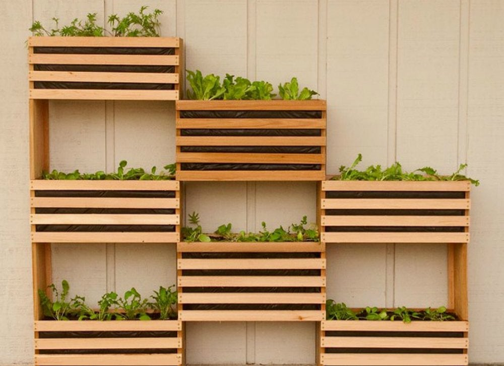 Vertical_vegetable_garden