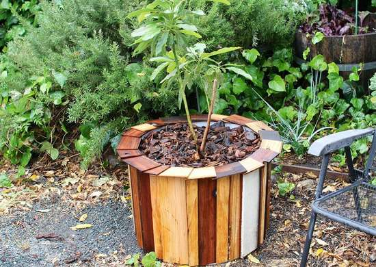 Wood_planter