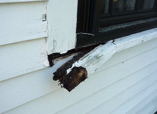 Rot window trim