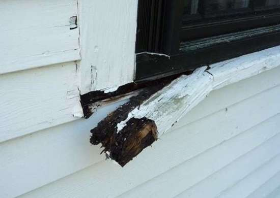 Rot-window-trim
