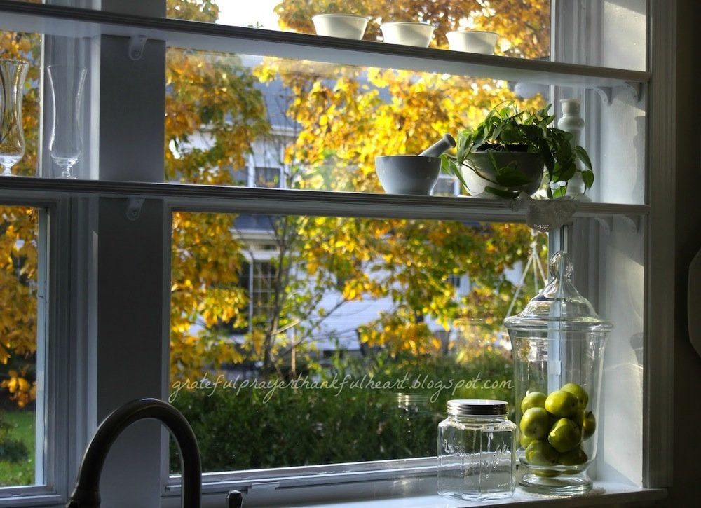 Kitchen_window_shelves