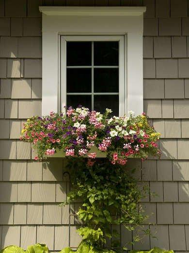 Make a Window Box