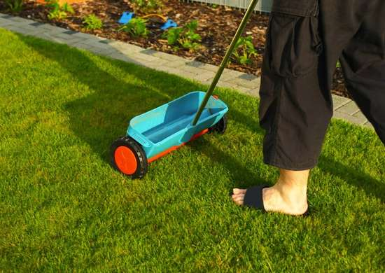 Epsom salt lawn spreader