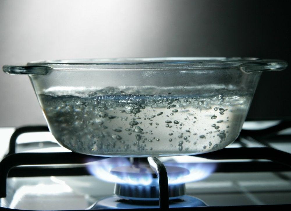 Lush lawn   boiling water