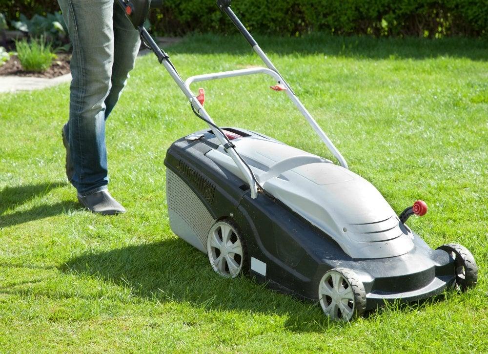 Lush lawn   mowing