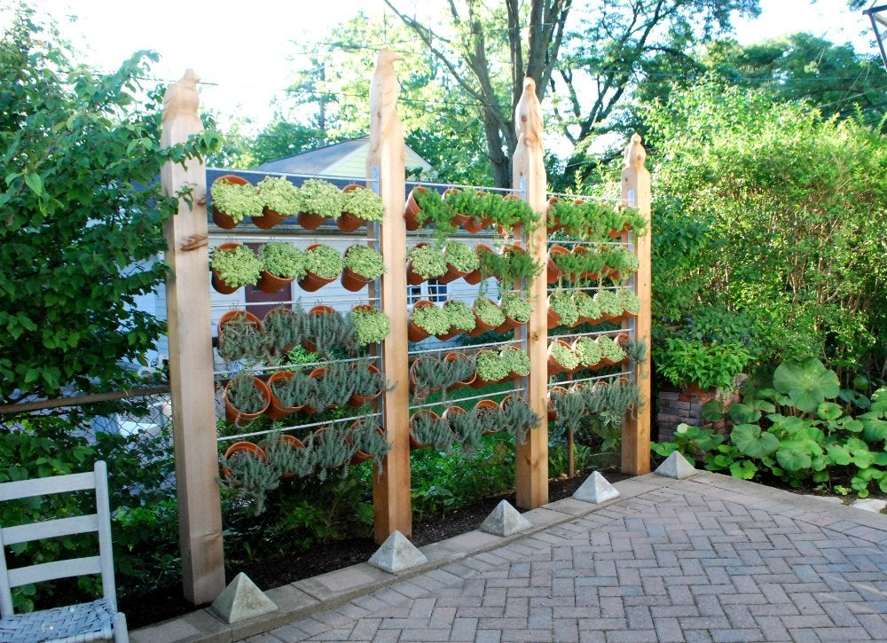 Plant_wall_for_backyard_privacy