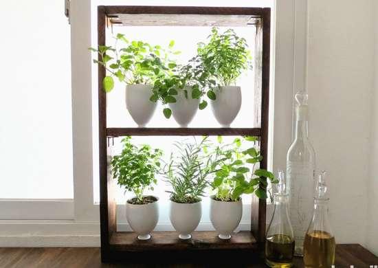 Diy herb garden weekend project