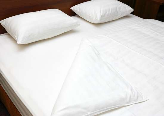 Check Mattress for Bed Bugs
