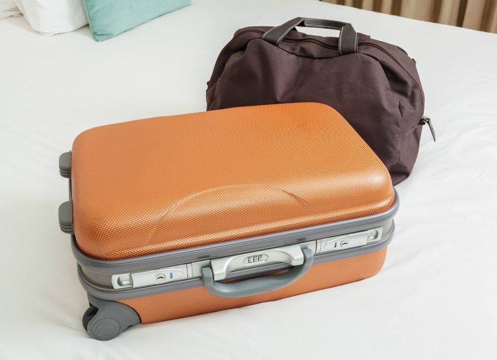 Bed bugs   cover suitcase