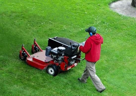Lawn_care_services