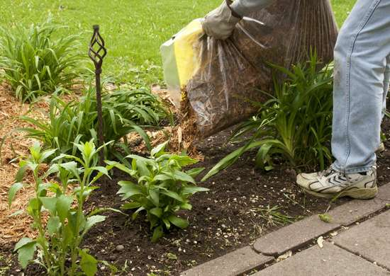 Mulch Weed Barrier