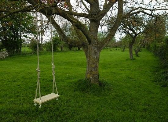 Backyarddiy treeswing