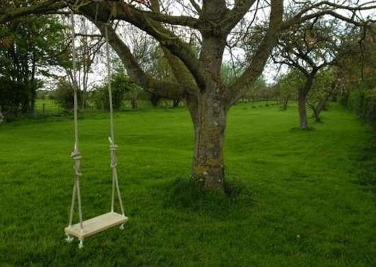 Backyarddiy_treeswing