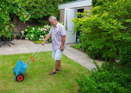 Fertilizer lawn
