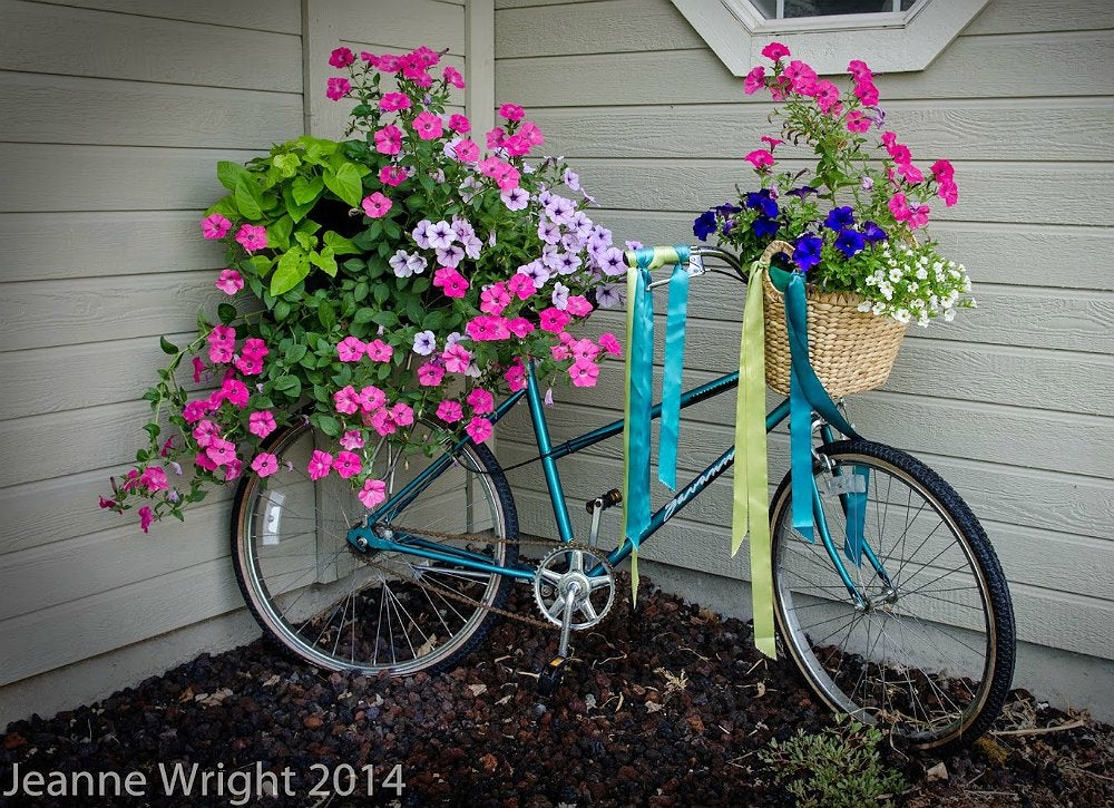 Sporting equipment   bicycle planter