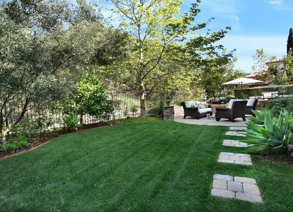 Artificial lawn backyard landscape ideas 8 lawn less for Grass design ideas