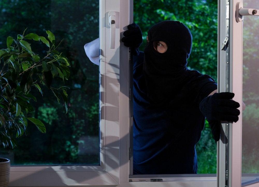 Burglar_4