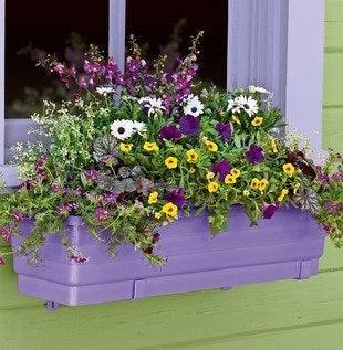 Gardeners.com_39-609