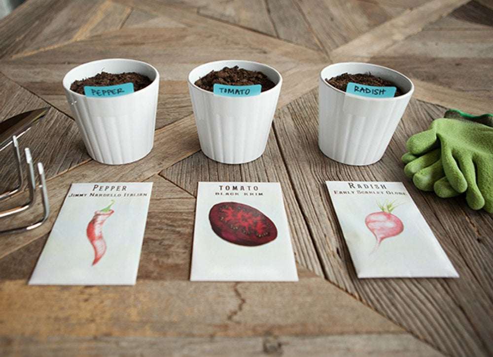 Creative ways to use office supplies   seeds