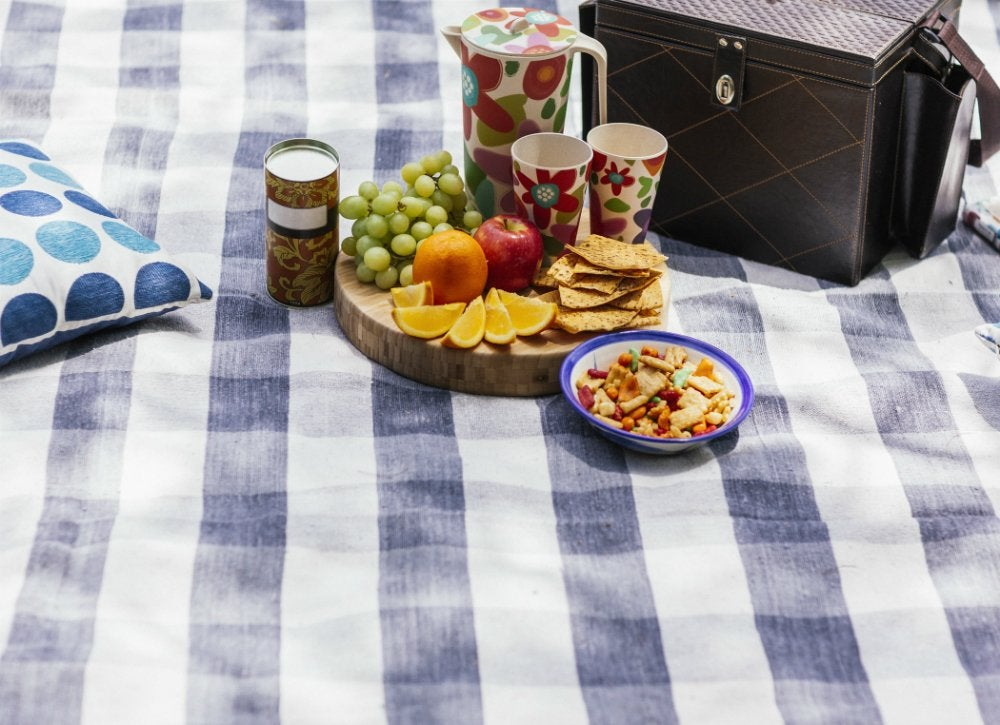 Mosquito_free_picnic_with_dryer_sheets