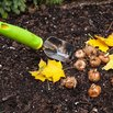 Fall Gardening - Planting Bulbs