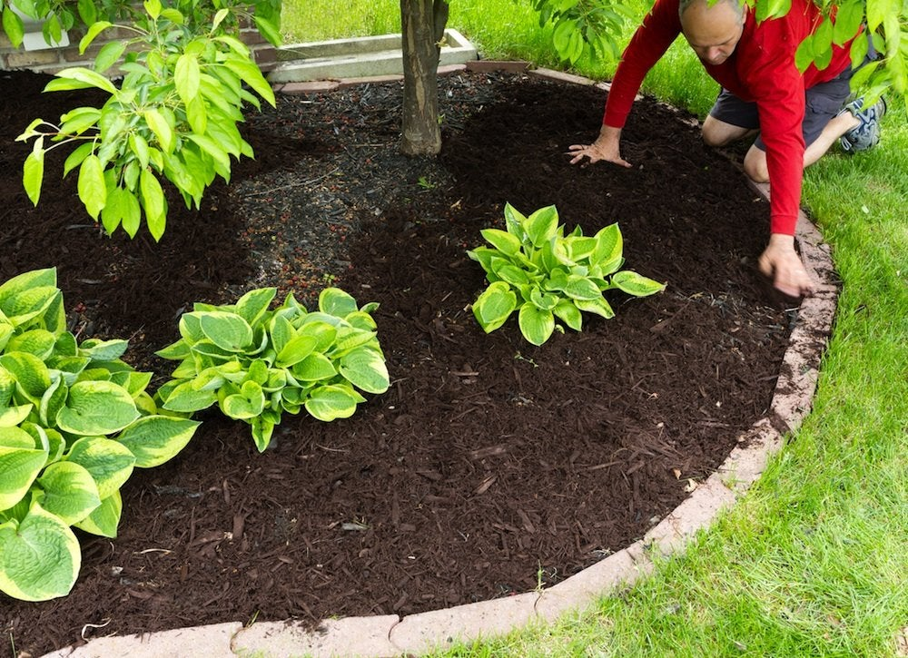 Mulching garden plot