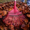 Fall Gardening - Raking