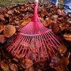 Fall Gardening - Raking