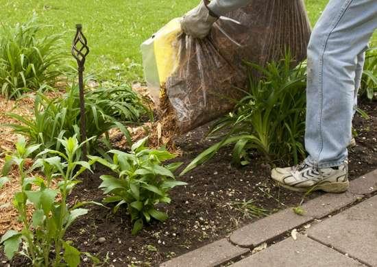 Mulching Garden Beds