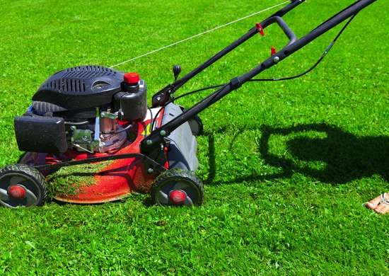 Mowing_the_lawn