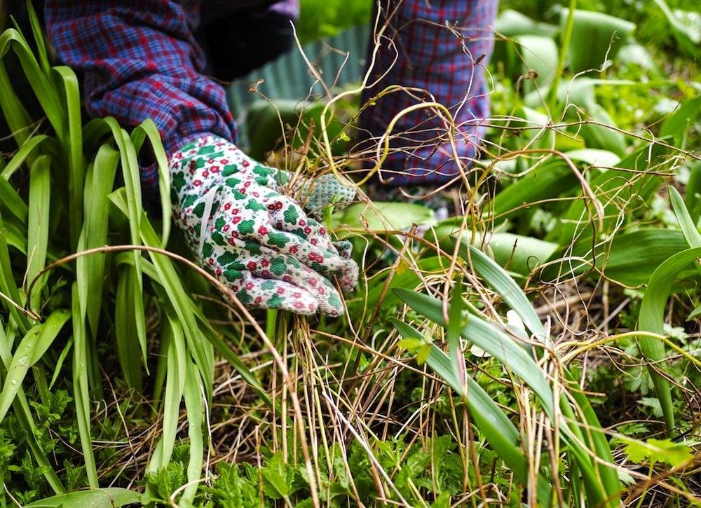 Yard clean up 9 tricks for easier fall maintenance bob vila - Weeding garden make work easier ...