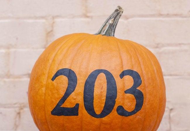 Pumpkin_24