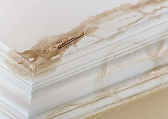 Home_repairs_-_water_spot