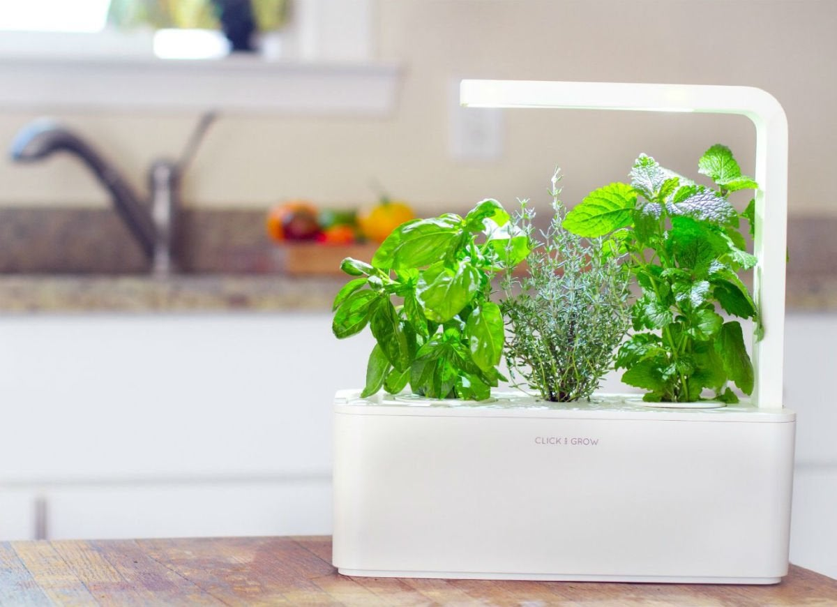 Gadget gift guide   click and grow garden