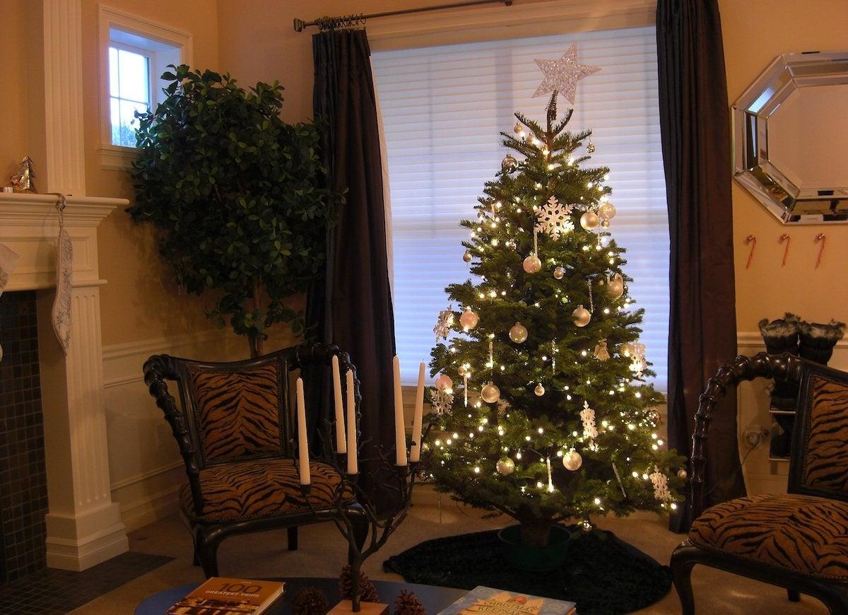 Crooked christmas tree