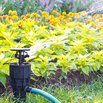 Position Sprinklers Next to Your Garden