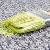 How to Remove Paint on the Carpet
