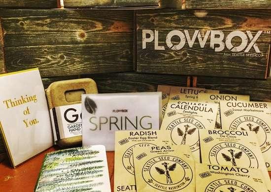Plow_box