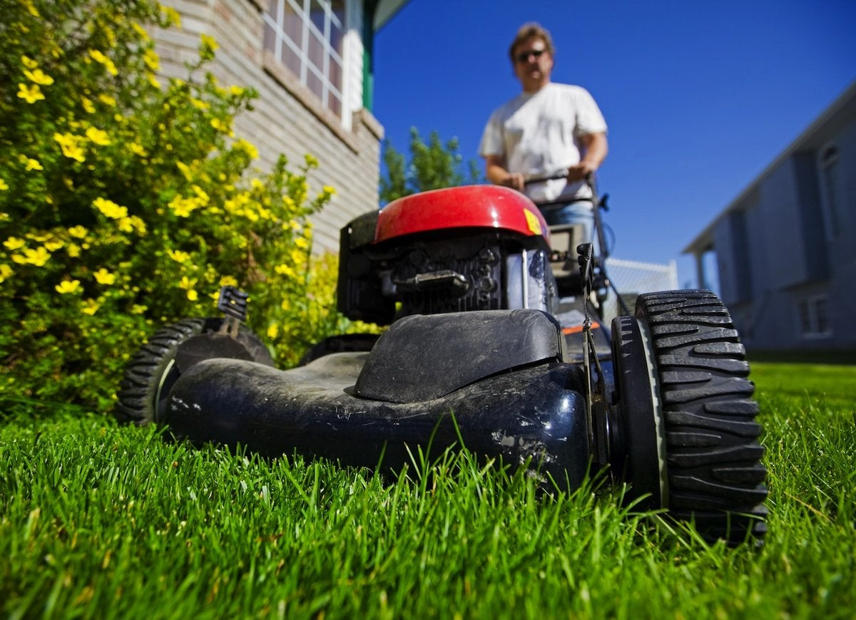 Mow the lawn