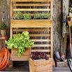 Vertical garden trend