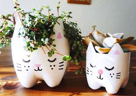 DIY Cat Planter