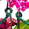 Zip Ties to Secure Flowers